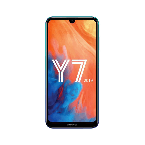 Y7 (2019)